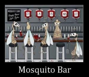 mosquitobar