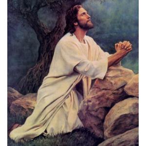 jesus-prayed-in-garden